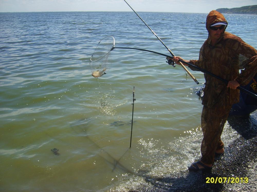рыболовный прогноз в волгоградской области